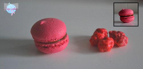 Les Macarons Chocolat-Praliné et Pralines !