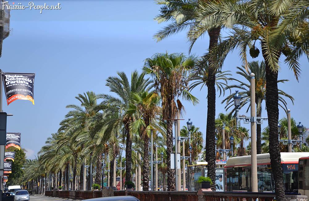 O se balader barcelone les lieux incontournables rambla front de mer - Port de plaisance barcelone ...