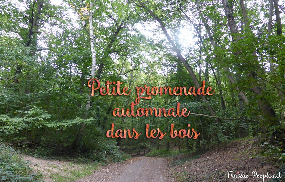 petite promenade automnale dans les bois