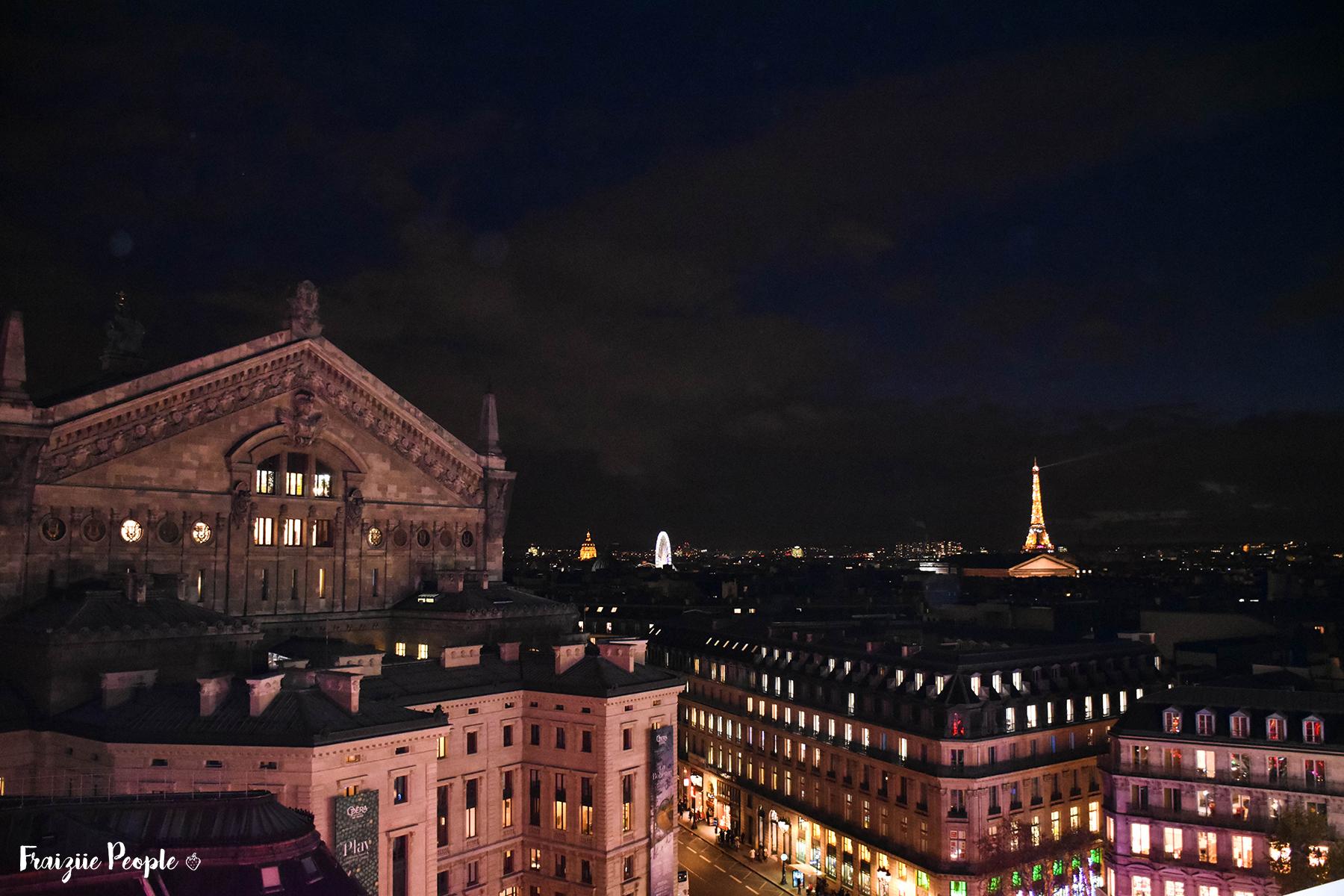 Vue panoramique de Paris aux Galeries Lafayette - Fraiziie-People
